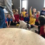 kids waiting to pet a goat in class